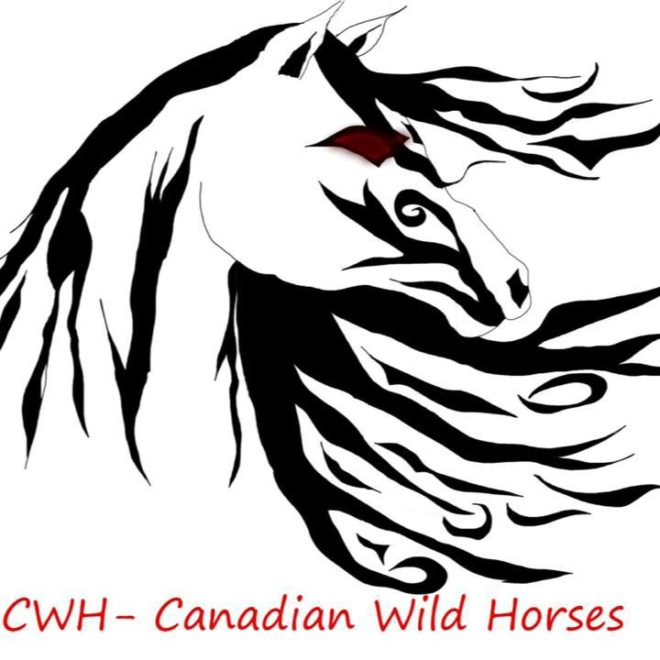 Canadian Wild Horses Foundation
